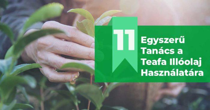 A Teafa Illóolaj Hatása és 11 Tipp az Alkalmazására